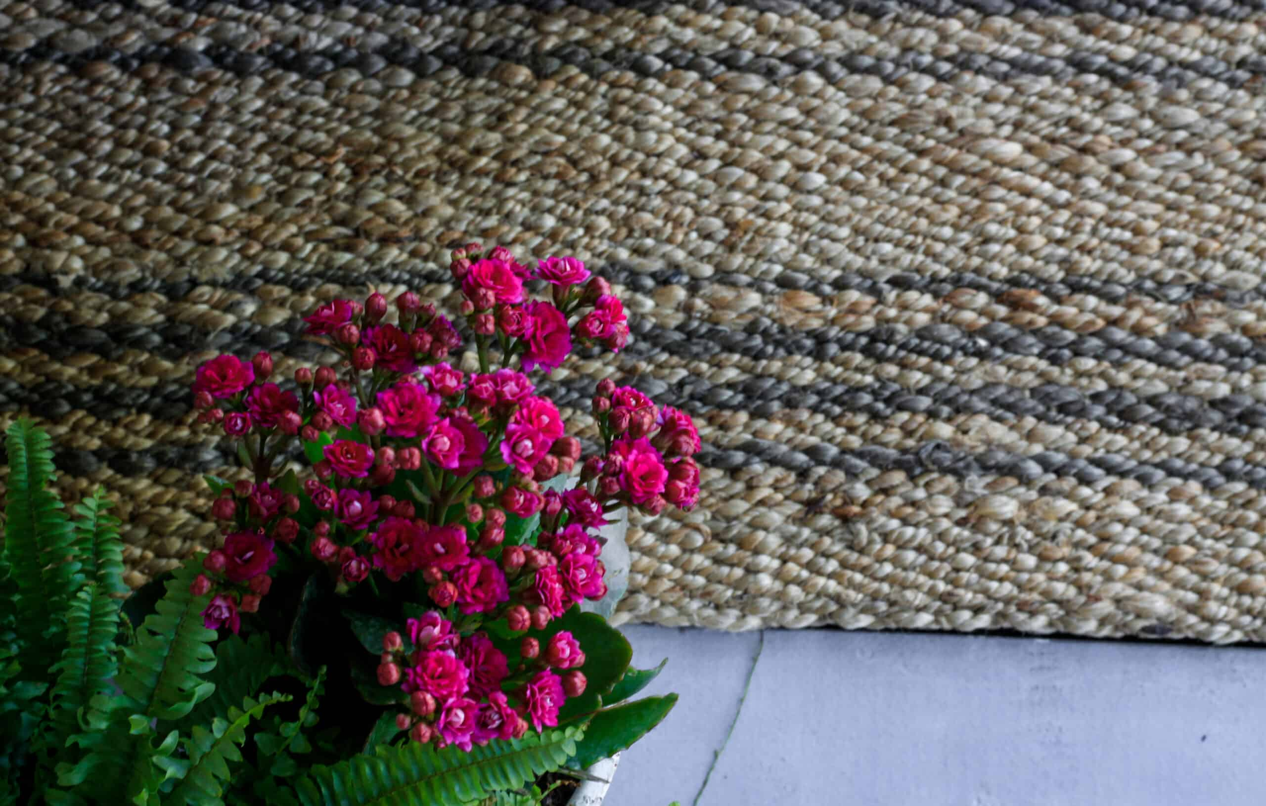 closeup of striped jute rug and pink flowers